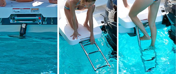 Integrated swim ladder